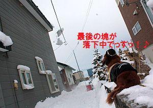 2009.12.26(土)雪庇落としIMG_0238