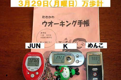 2010(H22)3月30(火)IMG_9999