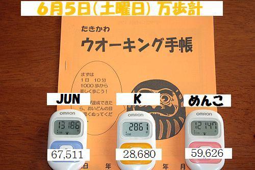 2010(H22)6月5(土)IMG_4795