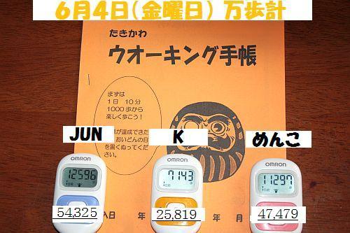 2010(H22)6.4(金)IMG_4766