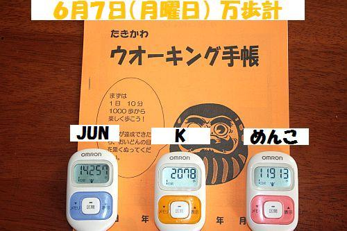 2010(H22)6月8(火)IMG_5067