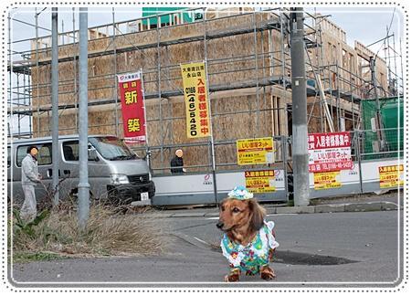 IMG_1854-20101028角のマンション工事