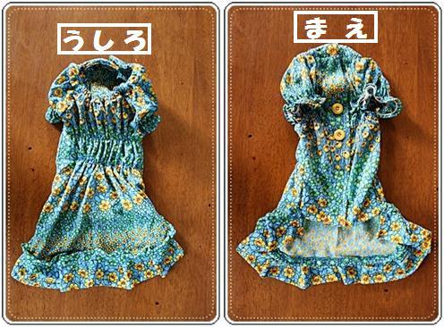 IMG_0970-20101201-horzあ~ちゃん