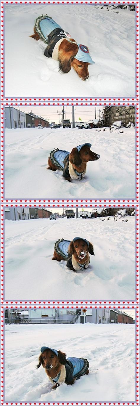12月16(木)雪遊び