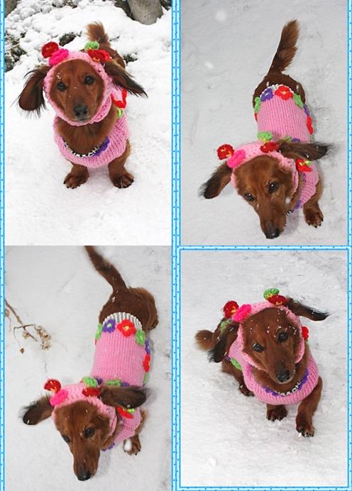 12月23(木)外は雪でっすっ♪