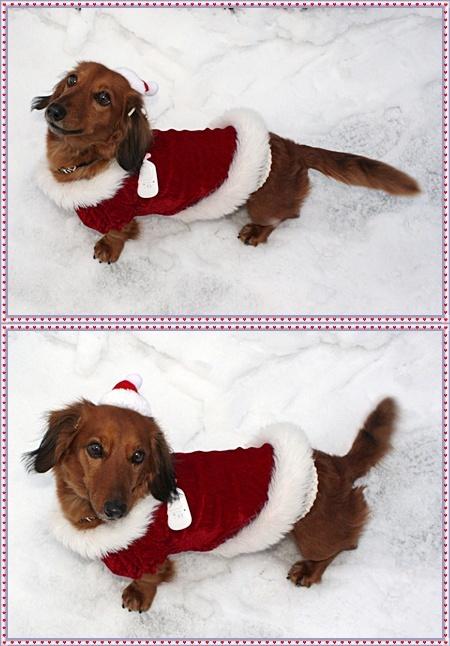 12月24(金)サンタさんみたいでしょっ♪