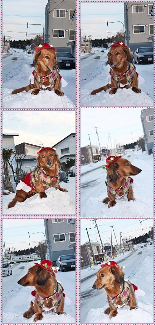 IMG_0362-20101229-tile12月28(火)雪の上で♪