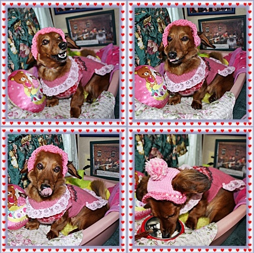 IMG_2007-20110124-tile1月24(月)ルームでいい顔♪