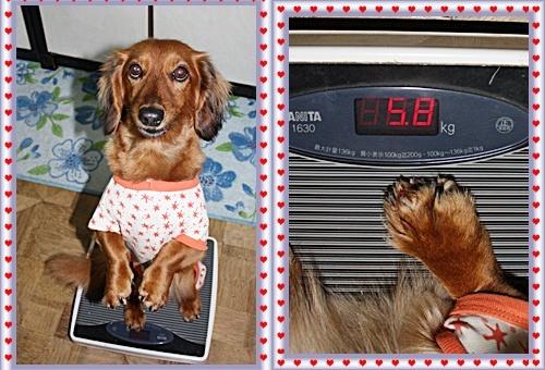 ♪IMG_2542-20110129-tile1月28(金)寝る前に体重測定