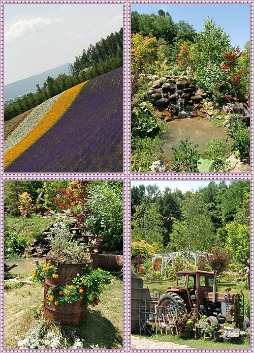 CIMG0036-20110727-tile.jpg