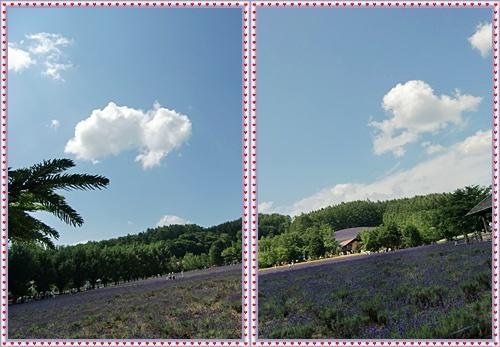 CIMG0042-20110727-tile.jpg