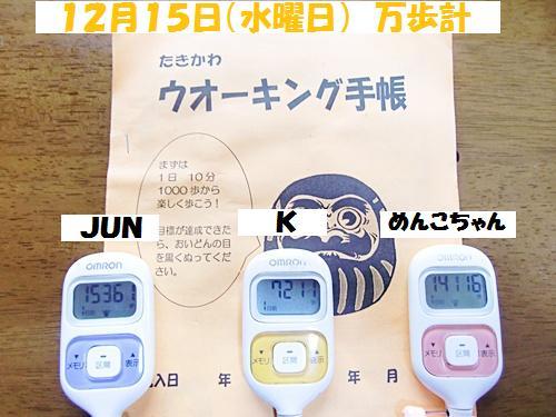 CIMG9548-20101216.jpg