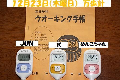 IMG_0021-20101224.jpg