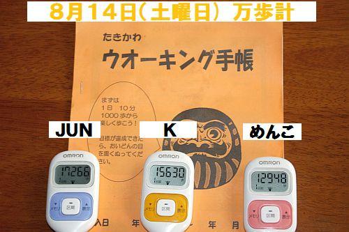IMG_0155_20100815224354.jpg