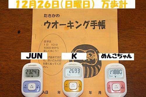 IMG_0287-20101227.jpg