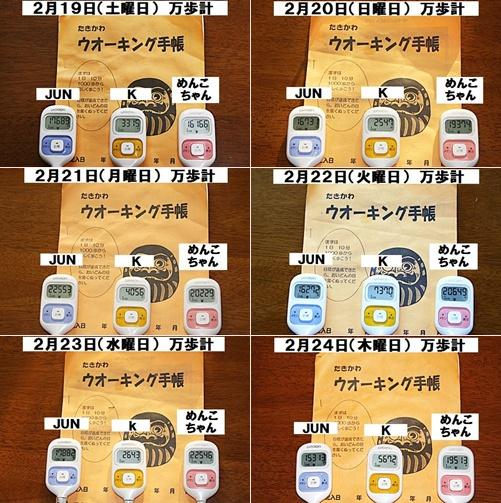 IMG_0287-20110226-tile.jpg