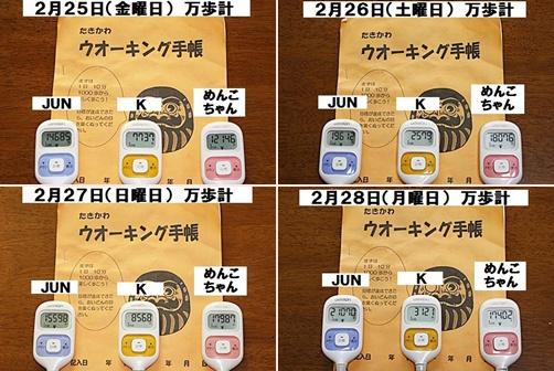 IMG_0377-20110226-tile.jpg
