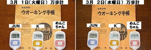 IMG_0445-20110303-tile.jpg