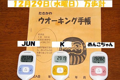 IMG_0479-20101231.jpg