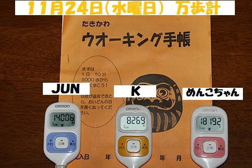 IMG_0510-20101125.jpg
