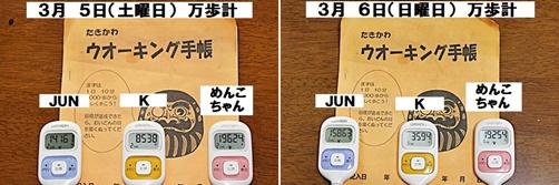 IMG_0603-20110310-tile.jpg