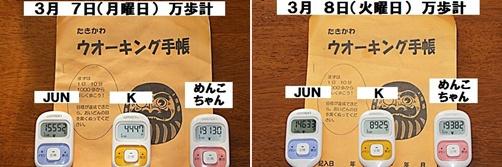 IMG_0613-20110312-tile.jpg
