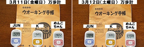 IMG_0683-20110312-tile.jpg