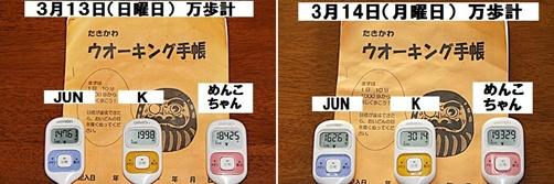 IMG_0719-20110315-tile.jpg