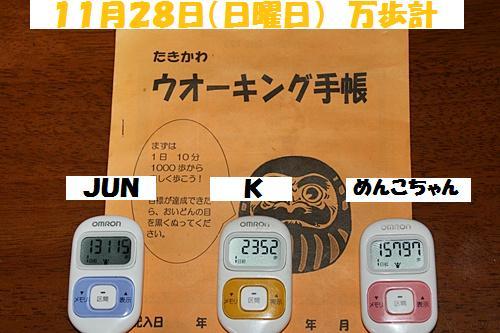 IMG_0809-20101129.jpg