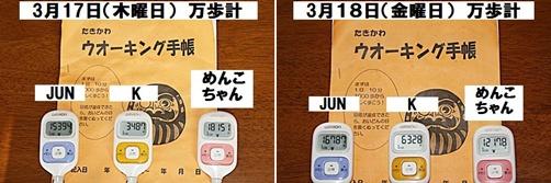 IMG_0844-20110320-tile.jpg