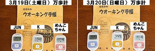 IMG_0888-20110320-tile.jpg