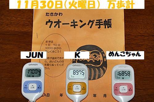 IMG_0939-20101201.jpg