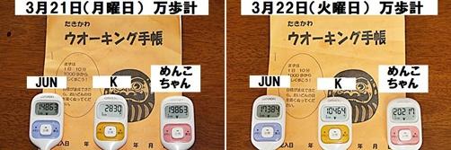 IMG_0941-20110325-tile_20110328005415.jpg