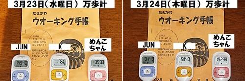 IMG_0968-20110325-tile.jpg