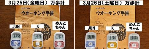 IMG_0992-20110402-horz.jpg