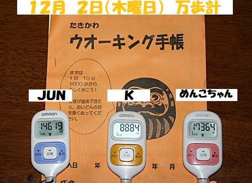 IMG_1064-20101203.jpg