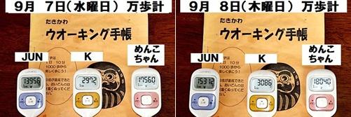 IMG_1132-20110911-tile.jpg