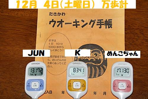 IMG_1179-20101205.jpg