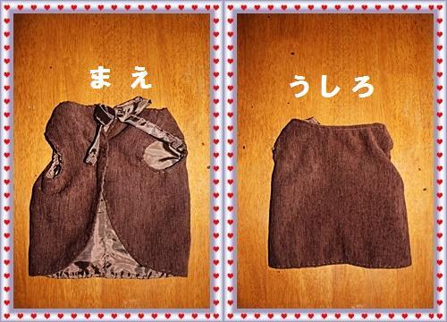 IMG_1201-20110112-horz.jpg