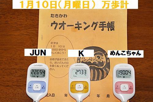 IMG_1250-20110111.jpg