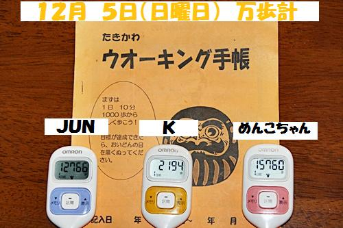 IMG_1288-20101206.jpg