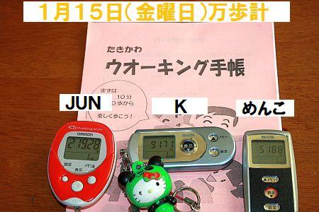 IMG_1290_20100116132114.jpg