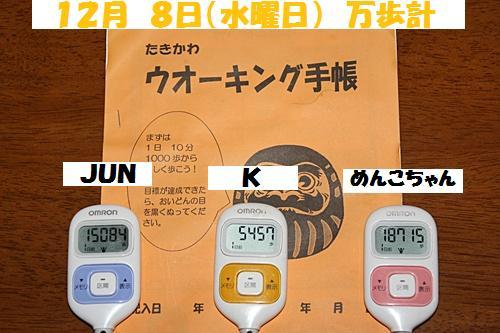 IMG_1495-20101209.jpg
