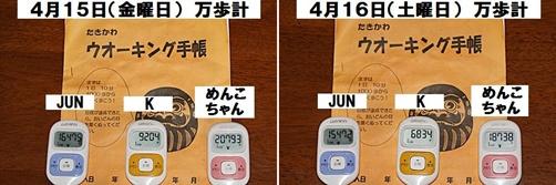 IMG_1500-20110417-tile.jpg
