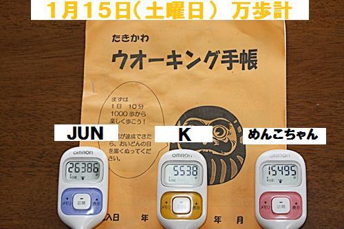 IMG_1542-20110117.jpg