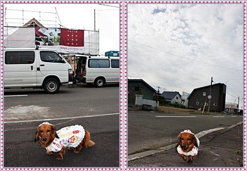 IMG_1631-20110921-tile.jpg