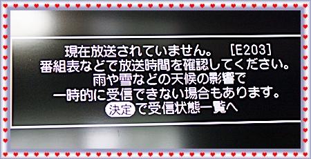 IMG_1654-20110117.jpg