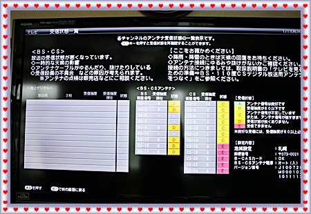 IMG_1659-20110117.jpg