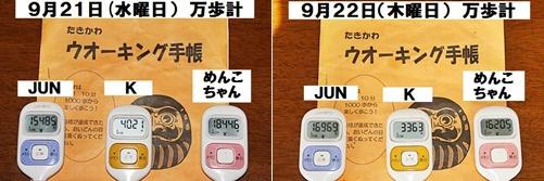 IMG_1713-20110925-tile.jpg