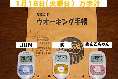 IMG_1721-20110119.jpg